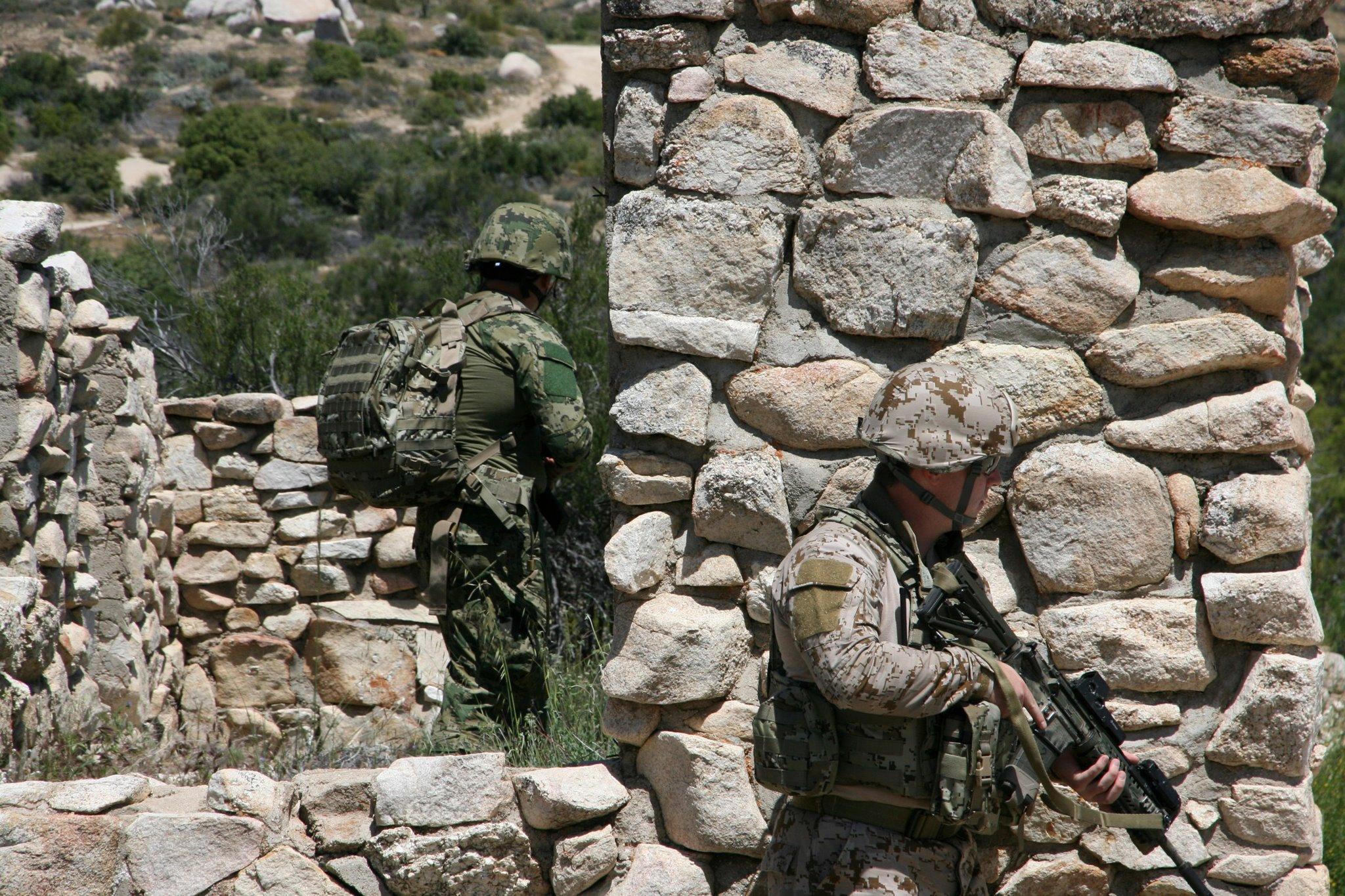 U.S. Army Phase IV Camouflage Improvement Program